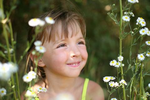 Bandwuermer helfen gegen Heuschnupfen und andere Allergien