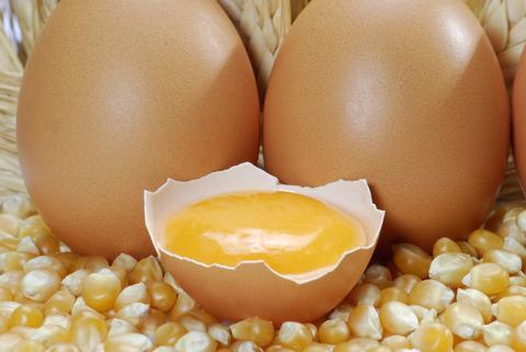 Eier Proteine Eiweiss