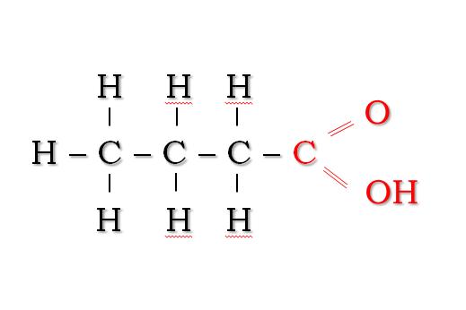 Die chemischen Struktur von Buttersäure (rot die Carboxylgruppe)