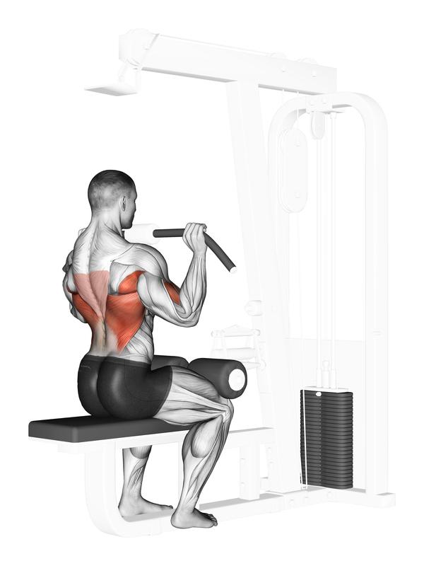 Beliebte Übung in Fitness udn Bodybuilding: Der Latzug zur Brust