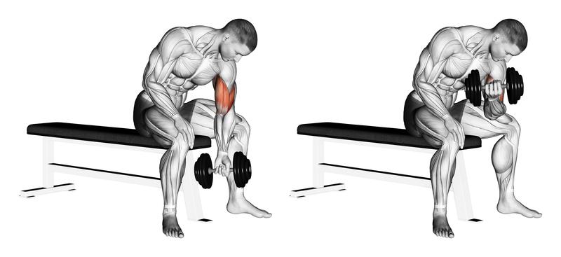 Best At Home Upper Back Exercises